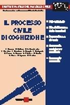 Il processo civile di cognizione
